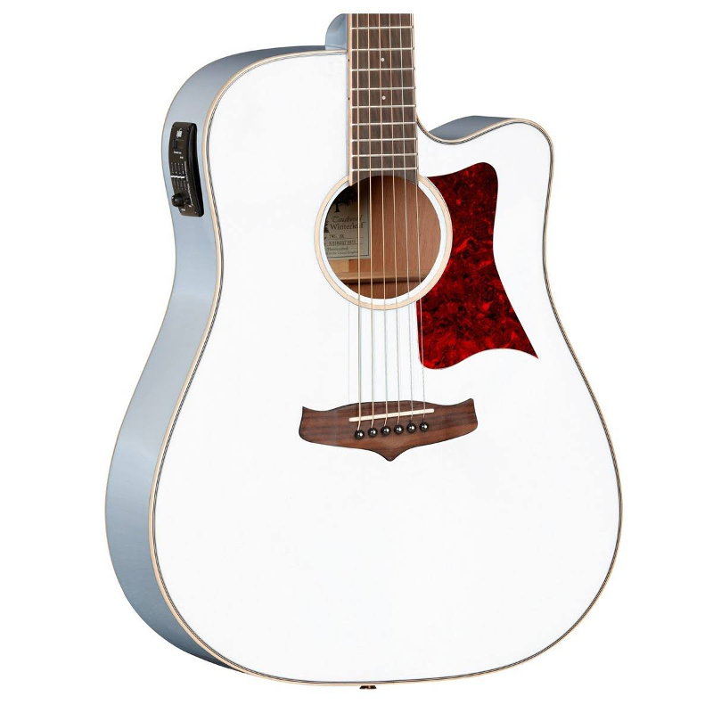 Tanglewood Tw5 Winterleaf Electro Acoustic Music Store